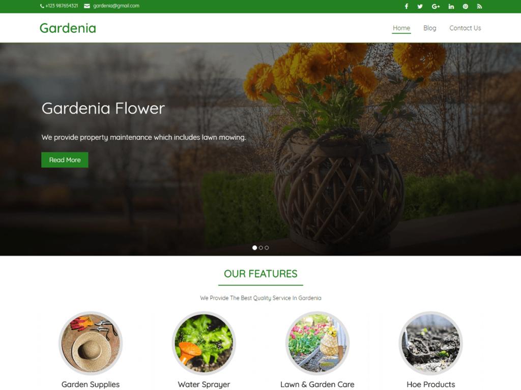 website designing company meerut